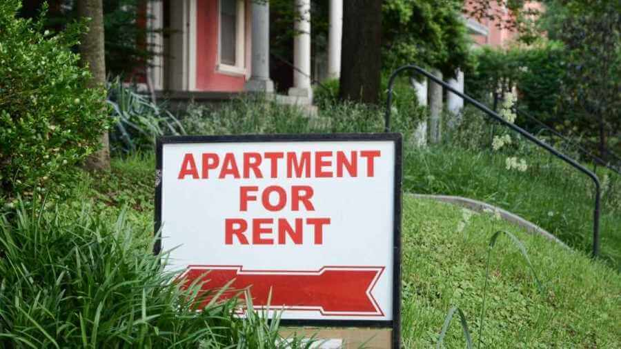How to Handle Consistent Rental Turnover and Doggy Damage